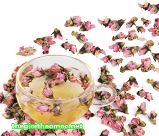 tách trà Hoa Đào