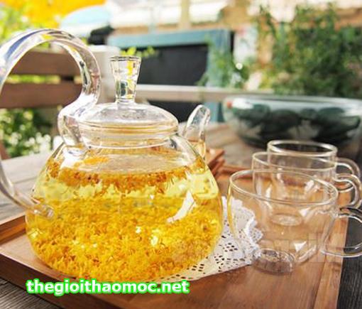 Ấm trà Hoa Mộc