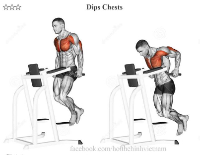 Dips Chests