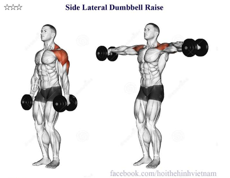 Side Lateral Dumbbell Raise