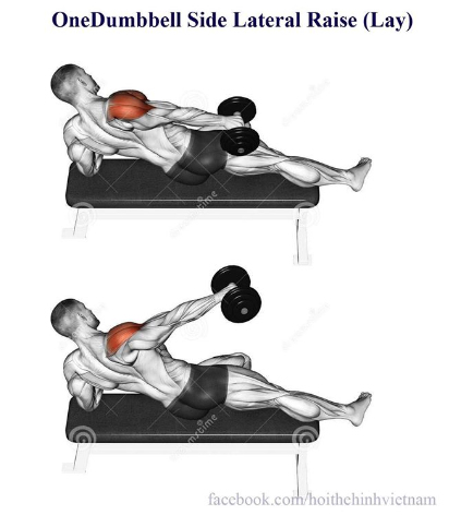 OneDumbbell Side Lateral Raise (Lay)