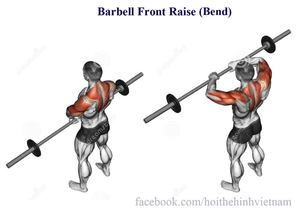 Barbell Front Raise (Bend)
