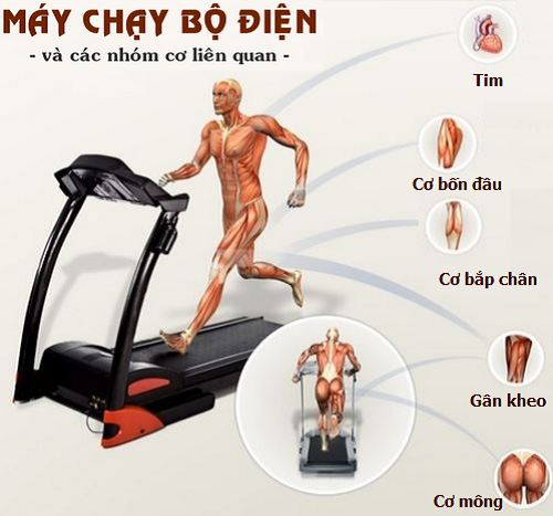 tap-luyen-cung-may-chay-bo-dien