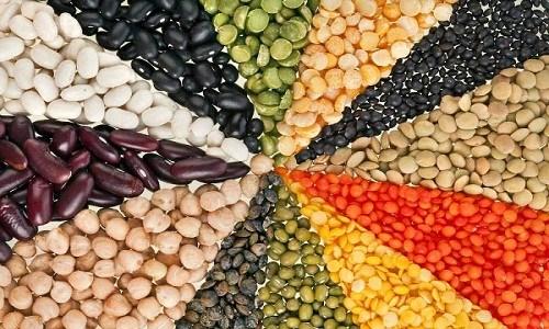 Image result for Vitamin B5 trong những loại đậu, nấm, cá, pho mát hay trứng và thịt lợn nạc